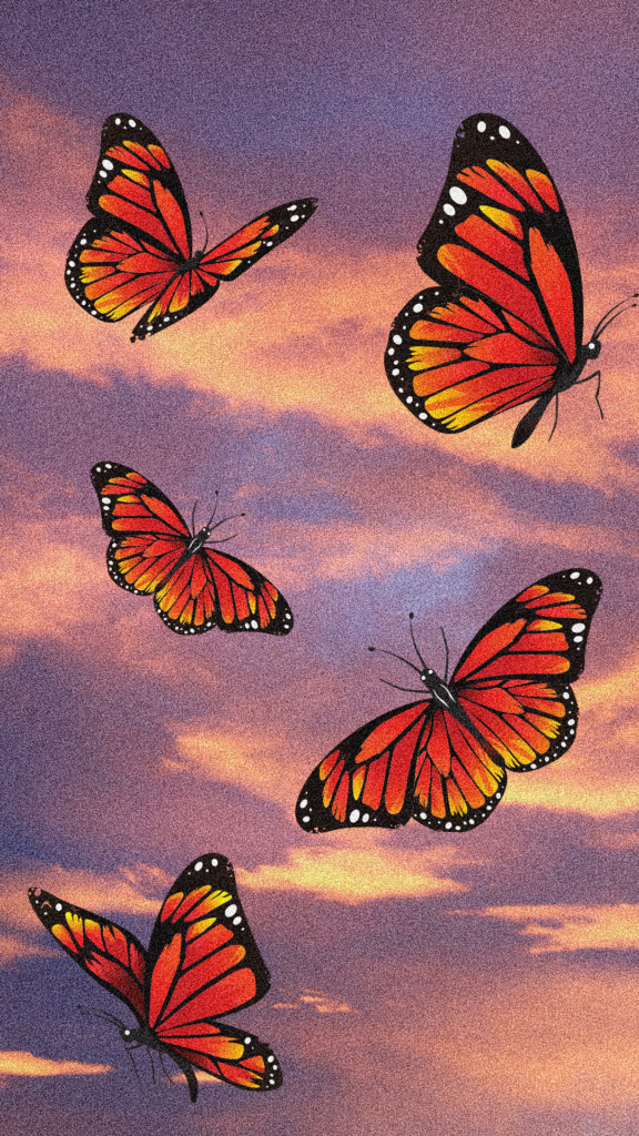 aesthetic butterfly sunset wallpaper
