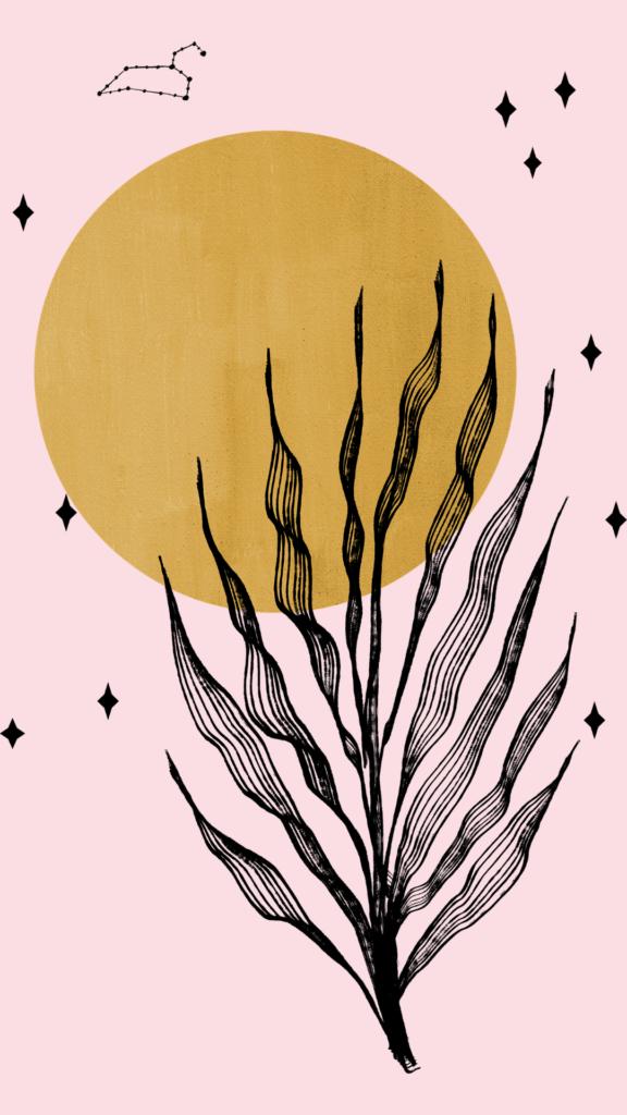 botanical illustration wallpaper