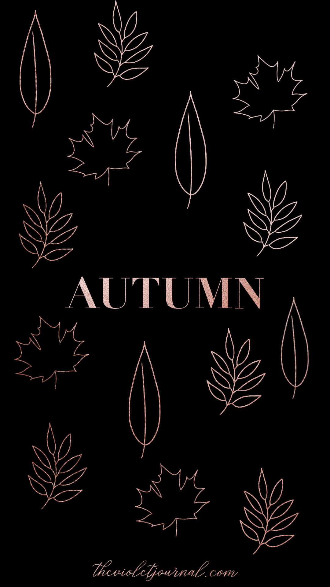 chic iphone wallpaper for autumn