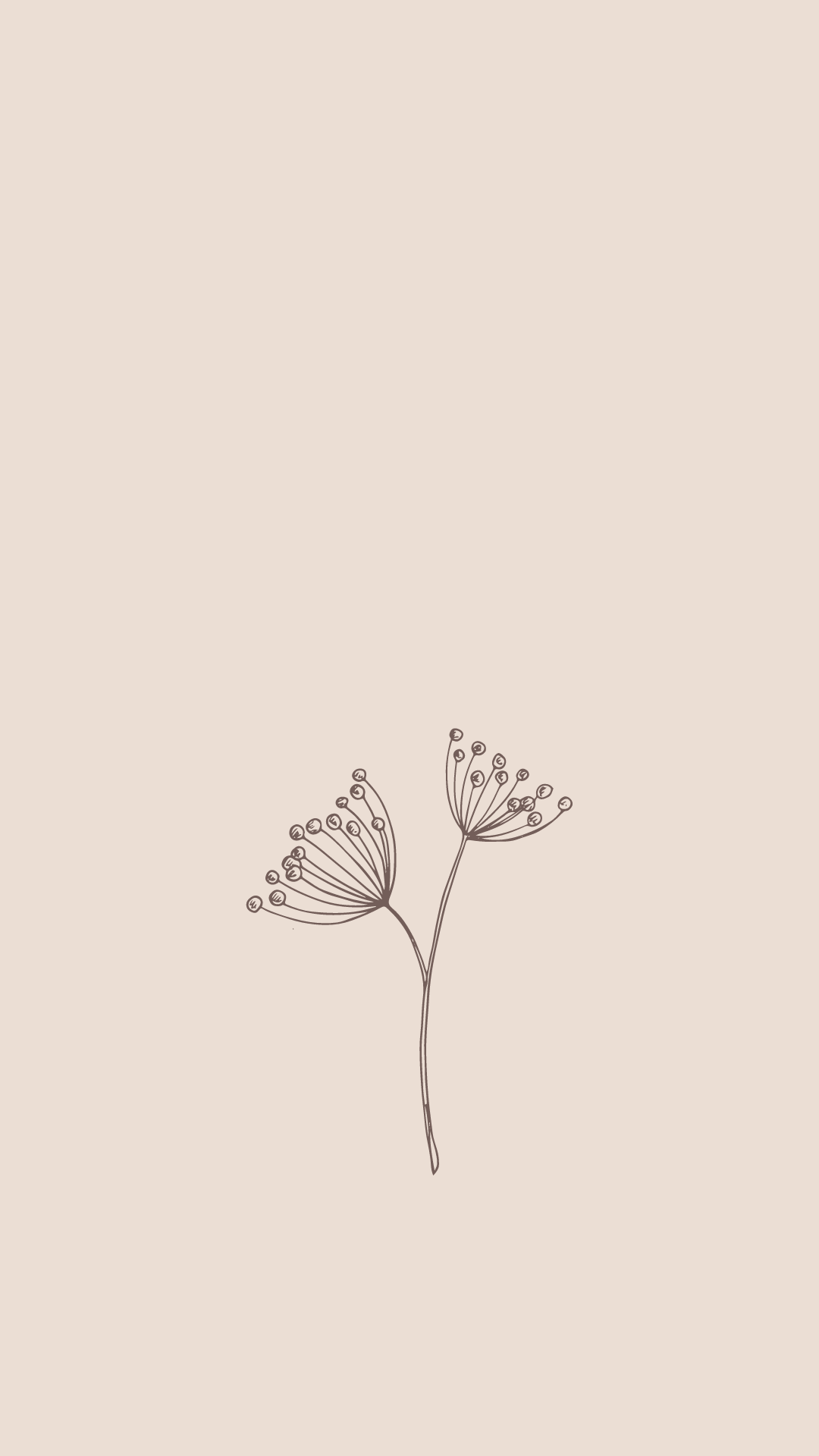 wildflower wallpaper
