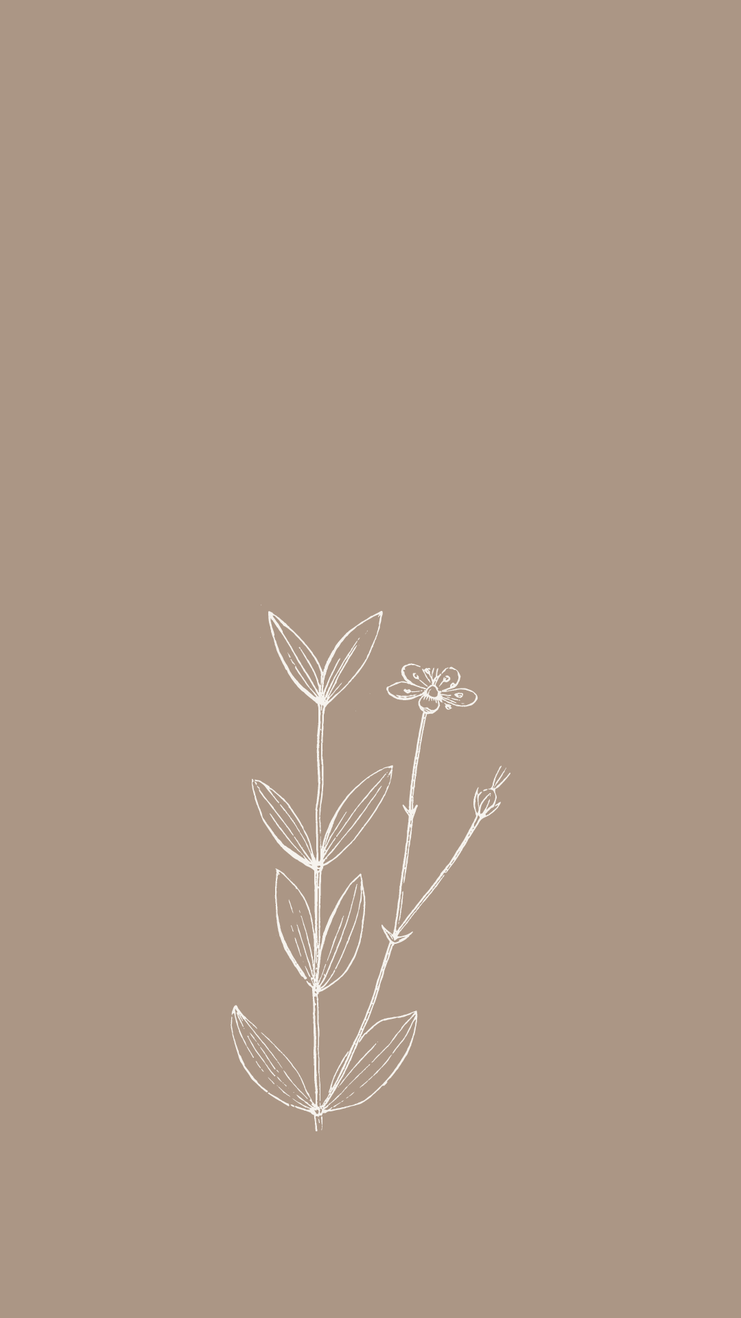 minimal spring wildflower wallpaper